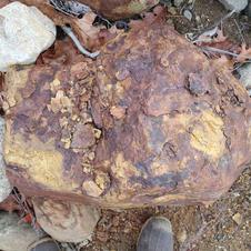A common sedimentary rock