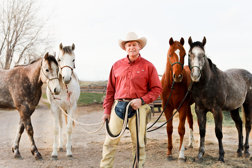 Bill Oliver with Oliver Horses and Horse