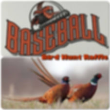 Powell Wyoming Legion Baseball Fundraise