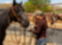 Spring Tune Up Horsemanship Clinic, Cody