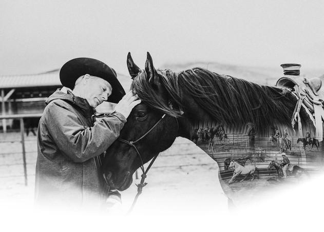 Bill Oliver Horsemanship double exposure horse head