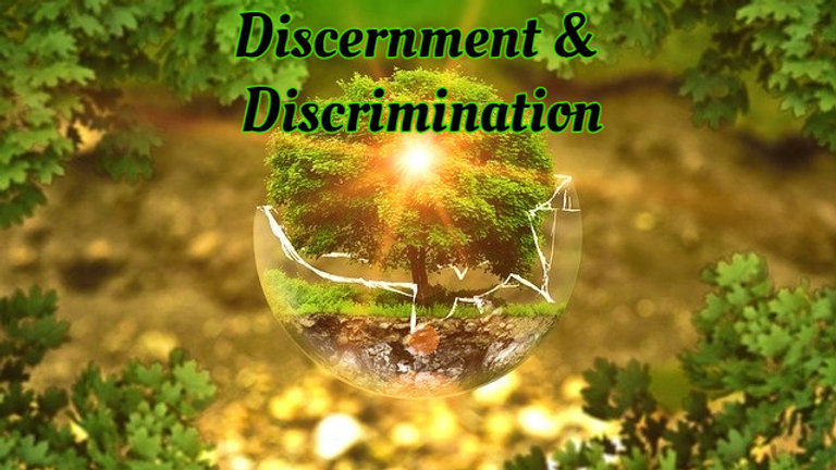 Discernment and Discrimination Spiritual Training