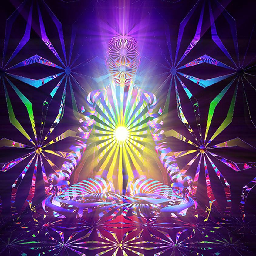 Conscious Embodiment