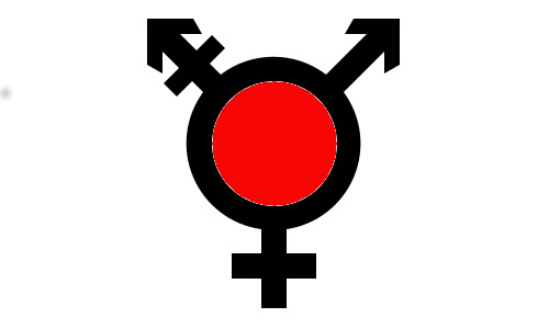 Transgender Guide