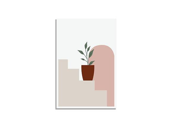 Postcard plant