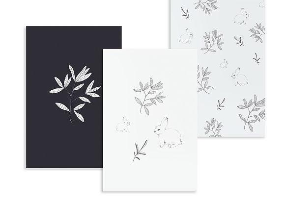 Black&White Pencil illustrations
