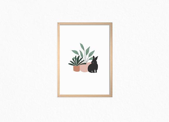 Black bunny and plants
