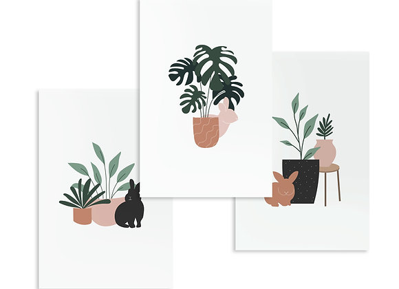 Bunnies and plants