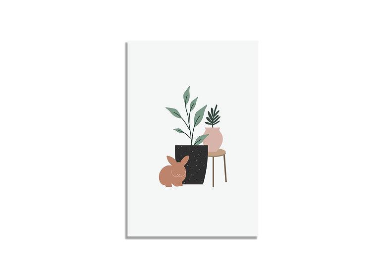 Postcard plants&orange bunny