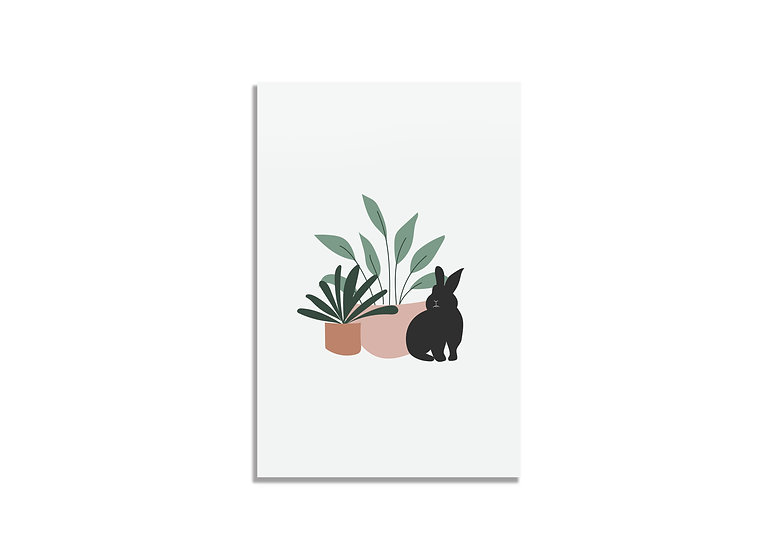 Postcard plants&black bunny