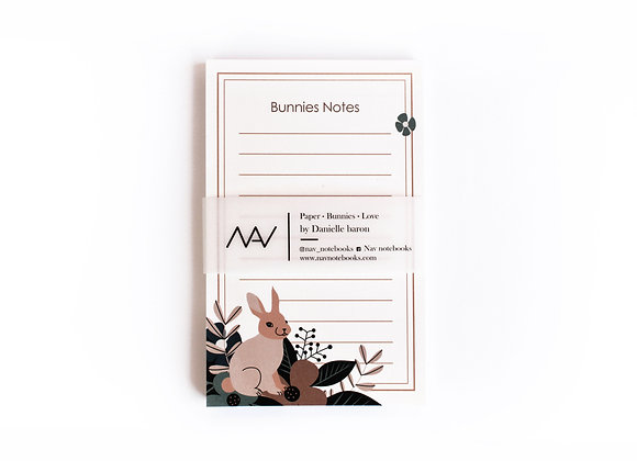 Orange Bunnies Notes