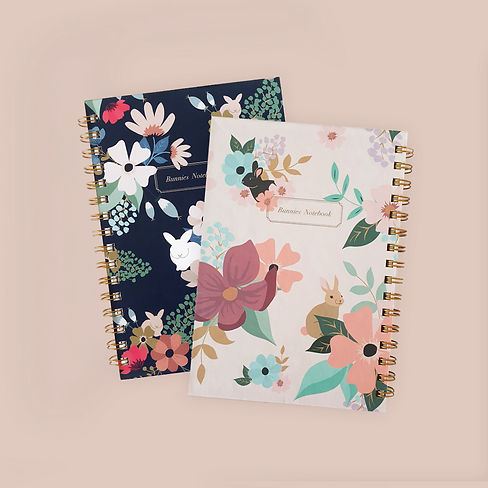 new notebooks collection post_2 copy.jpg
