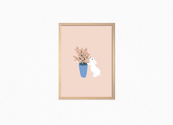 White bunny and Plant