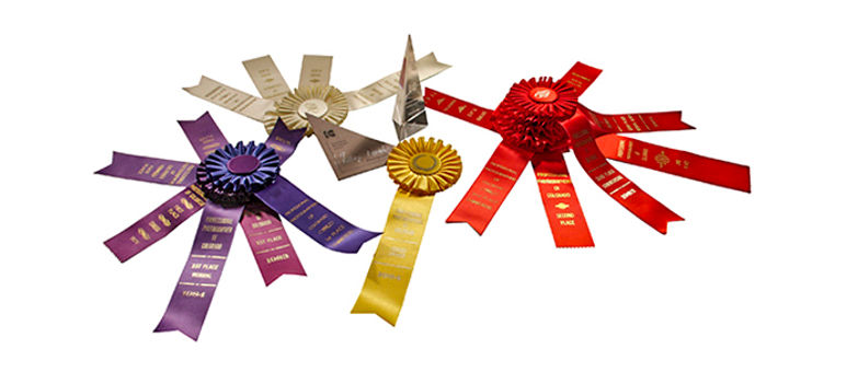 Awards_most x 72.jpg