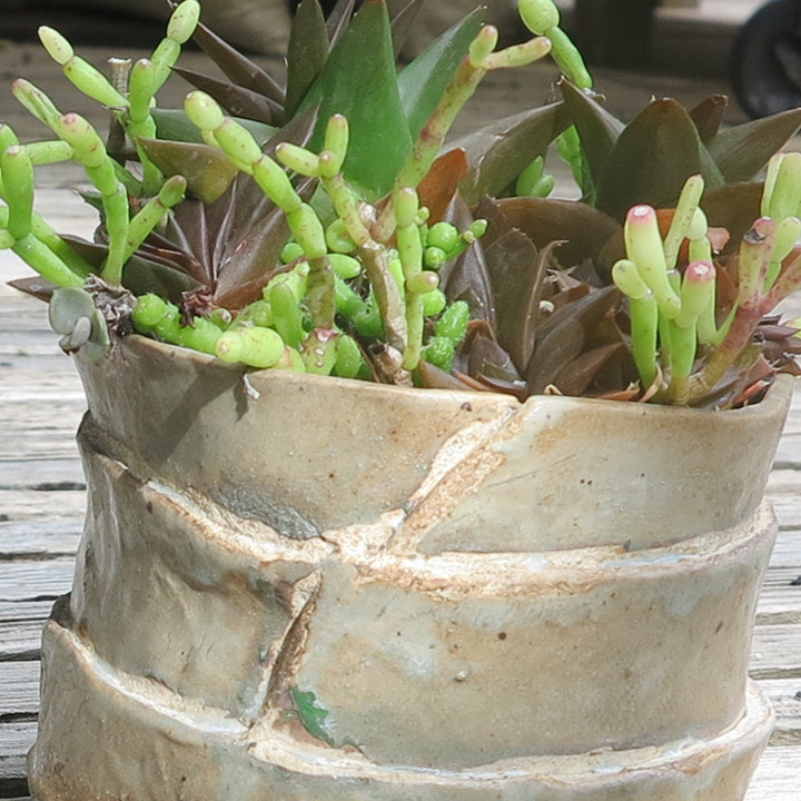 Birthday Cake Pot
