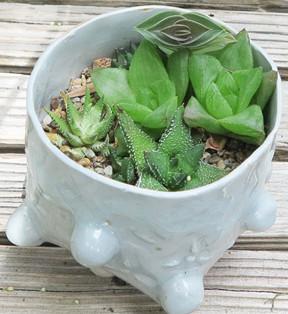 Bubble Pot