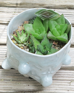 Bubble Pot