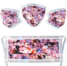 Blossom - All.jpg