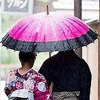 우산판매, 우산, 우산대여