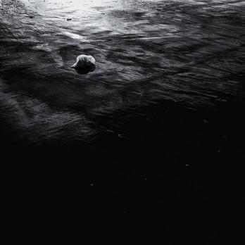 Etude en bord de mer 09