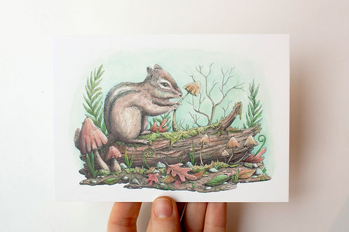 Postcard Curious Squirrel - watercolor