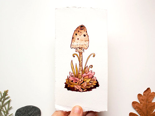 Original watercolour & ink Macrolepiota mushroom