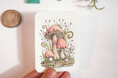 Original watercolour mushrooms illustration - Aceo