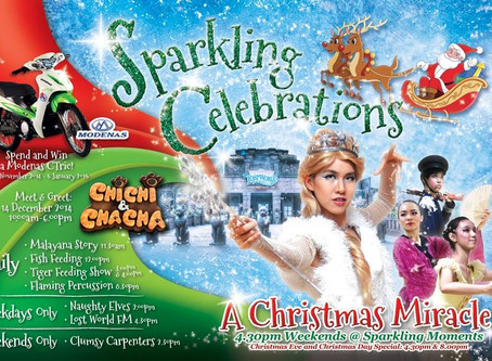 PSPA Presents - A Christmas Miracle