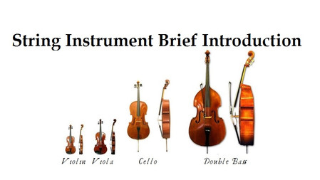 String Instrument Brief Introduction