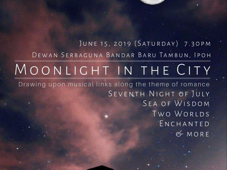 2019 Moonlight in the City
