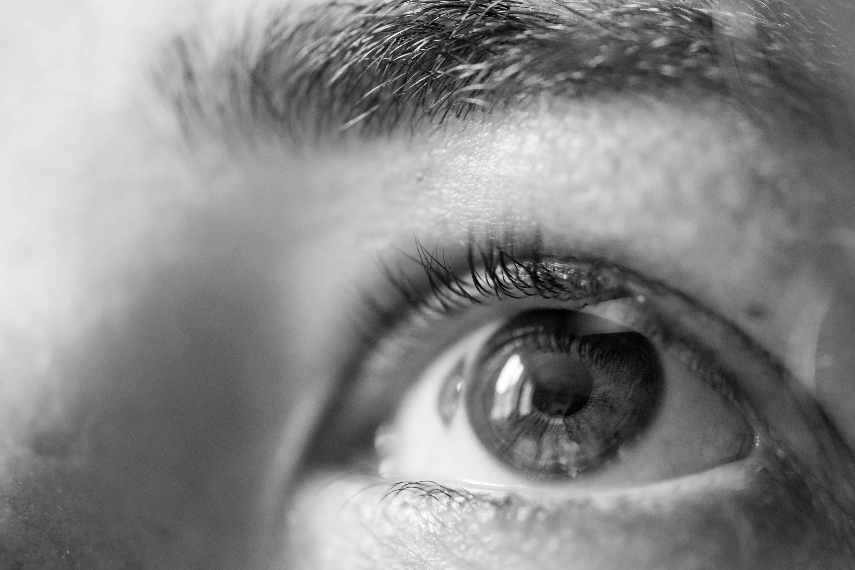 The Eyes - Freiburg