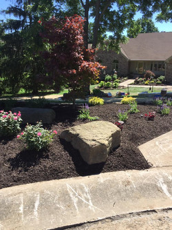 Landscaping Work 6