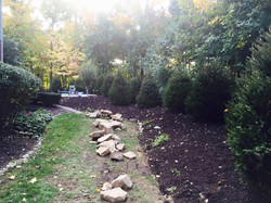 Lots of Norway Spruces & landscaping Work & stone wall 4