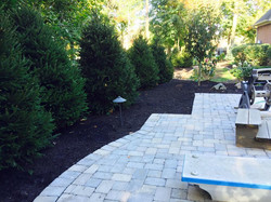 Lots of Norway Spruces & landscaping Work & stone wall 10