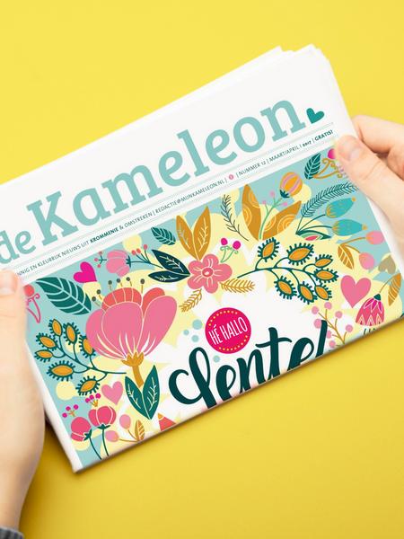 de Kameleon illustratie cover