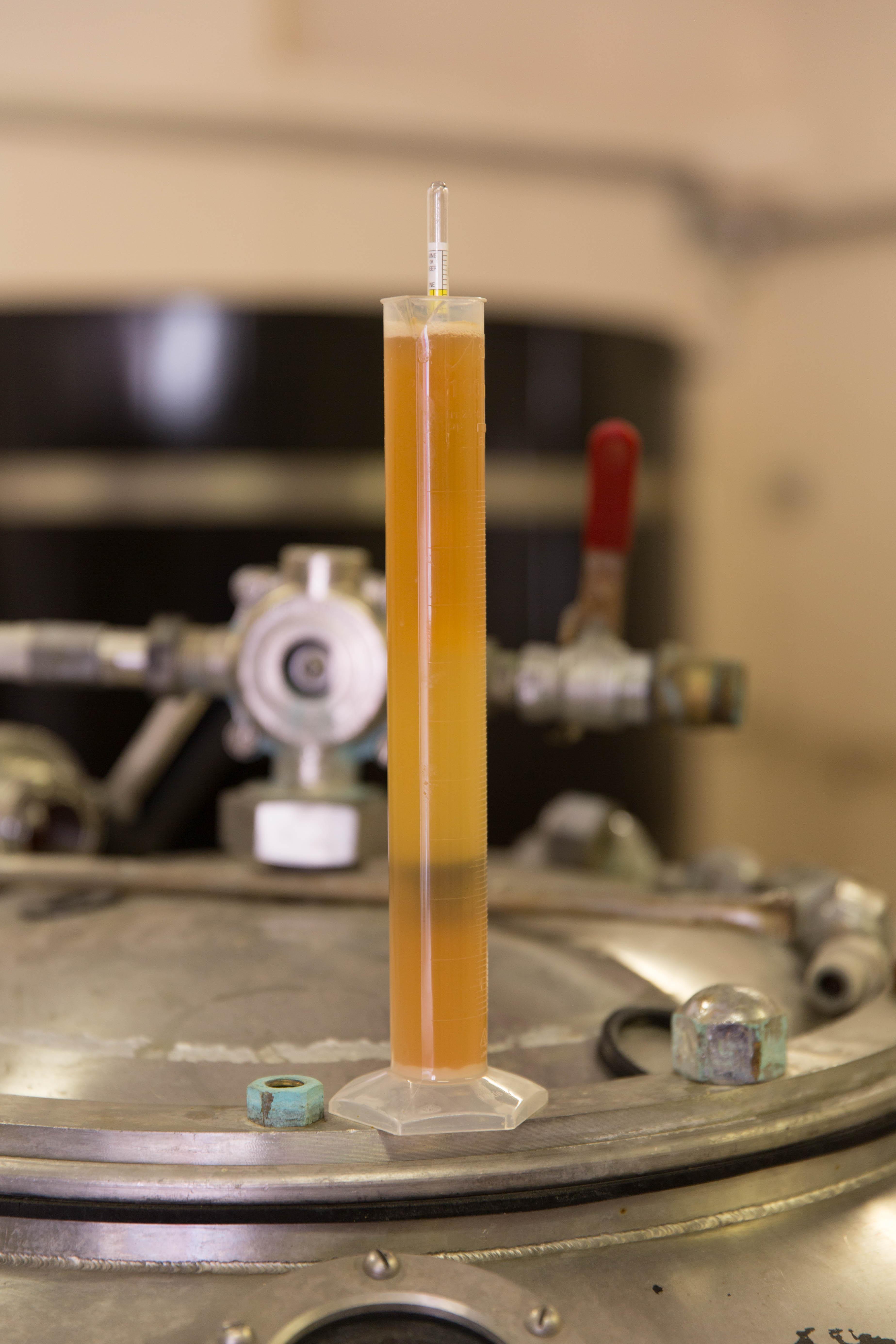 Test Tube Beer