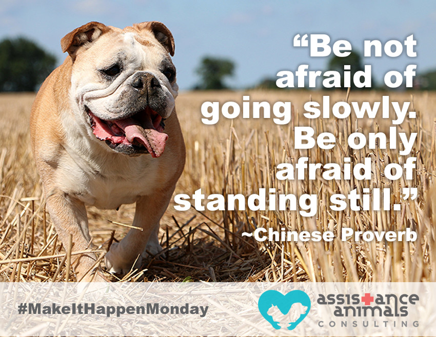 """Be not afraid of going slowly. Be only afraid of standing still."" - Chinese Proverb"