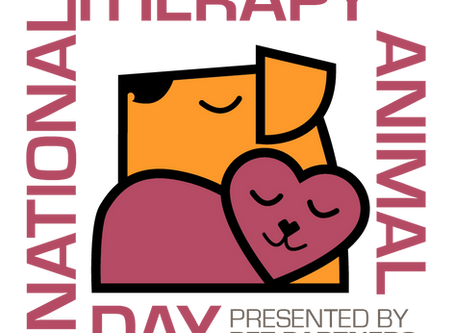 Celebrate Therapy Animal Day