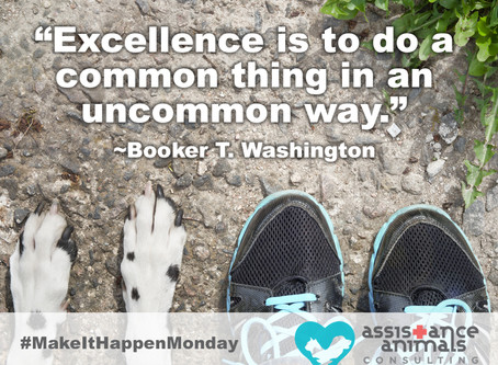 Excellence is....