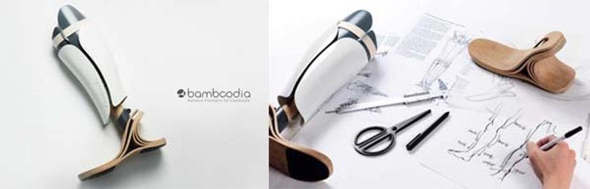 BAMBOODIA1.jpg