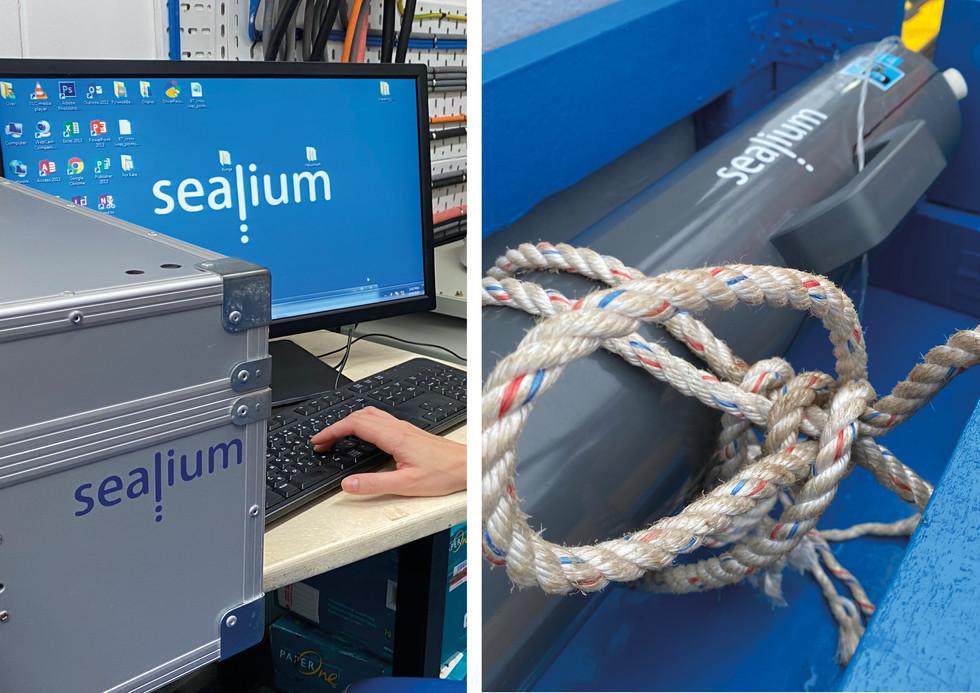 Sealium_Kate Zee_Portfolio26.jpg