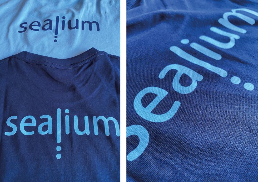 Sealium_Kate Zee_Portfolio21.jpg
