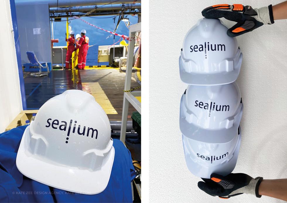 Sealium_Kate Zee_Portfolio11.jpg