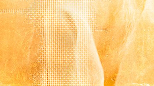 BASEFOND3-FONDVIDEOSITE-CIEFZ-©KpointRI