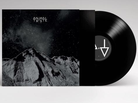 Identité visuelle pour ANIMAL TRISTE 1er album