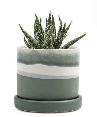 minute-plant-pots-matte-green-chive-2_1000x_ba837e82-d43c-4c6a-aff0-9d33d50c6f3e_1050x.jpg