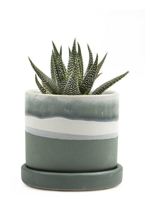 "Big Minute 5"" Ceramic Pot & Saucer"
