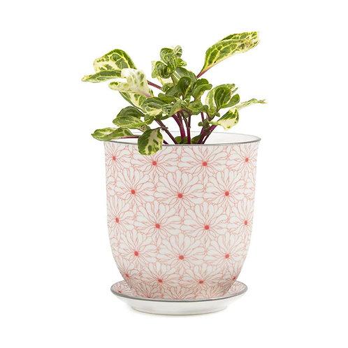 "Liberte 4.5""  Porcelain Pot & Saucer -orange flower"