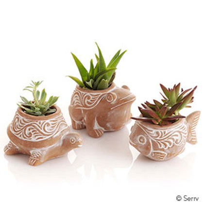 Pond Critter Planters. Made in Bangladesh. Fair Trade.