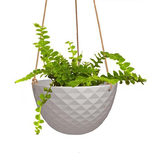 Mini Mofo Hanging Dish